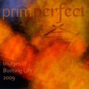 Prim Perfect's Images of Burning Life 2009