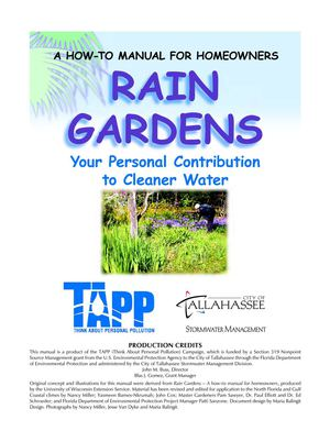 Florida Rain Gardens: Your Personal Contribution to Clean Water