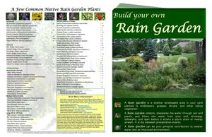 Marion County IN: Build your own Rain Garden