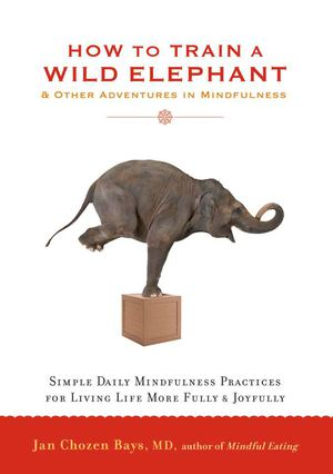 How to Train a Wild Elephant_PB