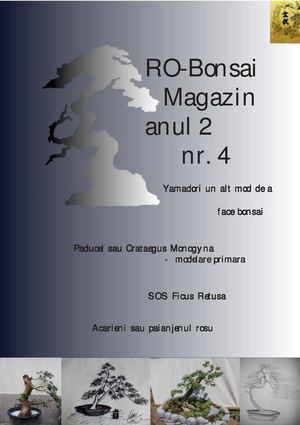 ro=bonsai magazin anul 2 nr 4
