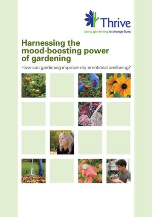 Harnessing the Mood Boosting Power of Gardening