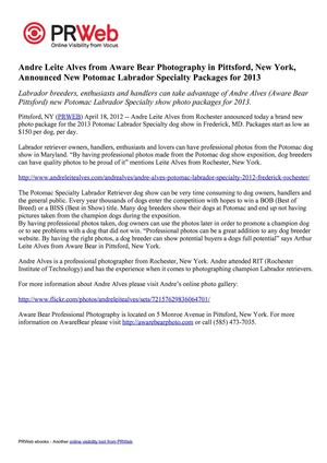 Andre Leite Alves from Aware Bear Photography in Pittsford, New York, Announced New Potomac Labrador Specialty Packages for 2013