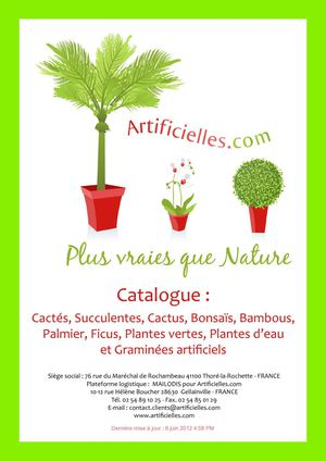 Calam o catalogue 6 cact s for Catalogue plantes vertes