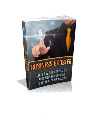 BusinessBooster-25wn8.pdf