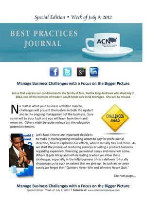 Managing Challenges with the Bigger Picture - Best practices Journal 7-9-2012