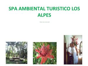 SPA AMBIENTAL TURÍSTICO LOS ALPES