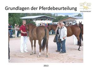 Calam o pferdebeurteilung teil 1 exterieur for Exterieur beurteilung pferd