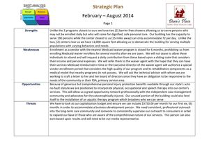 Adult Day Care SWOT Analysis And Sample Initial Strategic Plan  Example Swot Analysis Paper