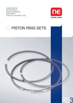 Briggs Stratton  Retaining Ring
