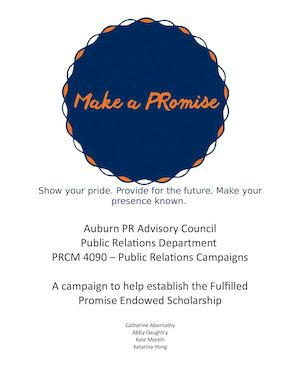 Make a Promise Campaign
