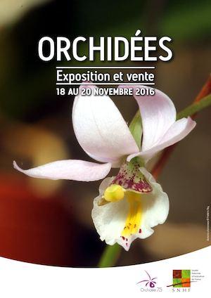 orchidee 75012
