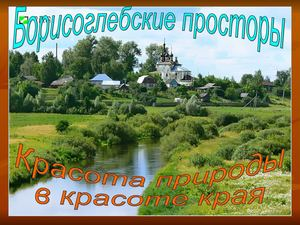 Борисоглебские просторы.