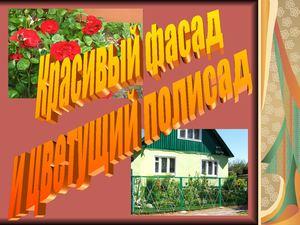 Красивый фасад и цветущий палисад..