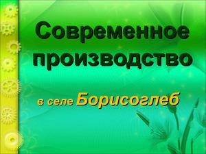 Современное производство в с.Борисоглеб.