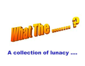 What the f... ? A collection of lunacy
