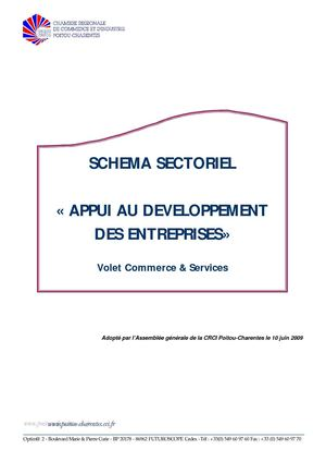 schema%20sectoriel%20commerce%20definitif%207052009