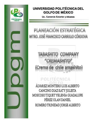 "Plan de Marketing ""TABASHITO COMPANY S. DE R.L."