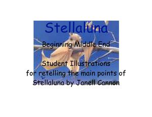Stellaluna Retelling through Pictures