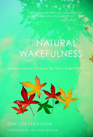Natural Wakefulness_HC