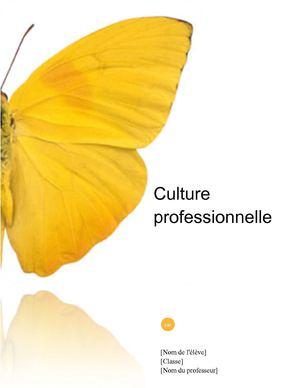 Calaméo Modèle De Portfolio D Activités Professionnelles