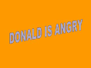 DONALD IS ANGRY