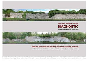 Diagnostic de restauration