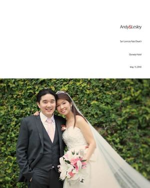 Andy and Lesley wedding album