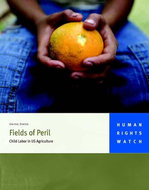 """Fields of Peril"" Report from Human Rights Watch (May 2010)"