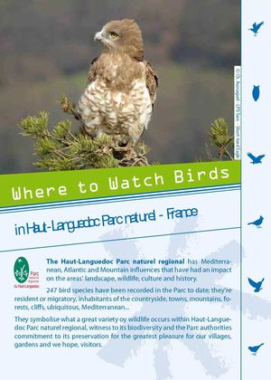 Parc naturel régional du Haut-Languedoc - Where to watch birds