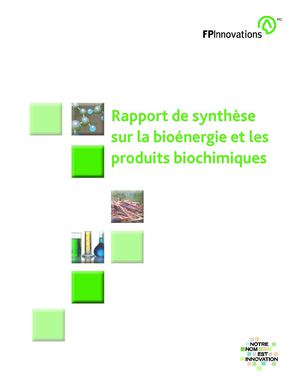Bio-energy and Bio-chemicals Synthesis Report (French)