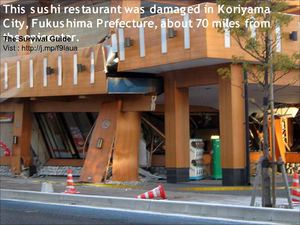 Earthquake Rocks Japan