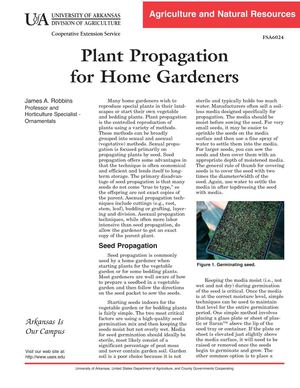 Plant Propagation for Home Gardeners