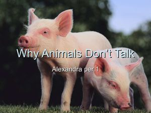 Why Animals Talk by Alexandra