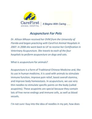 Calaméo - Acupuncture For Pets