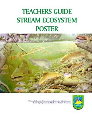Stream Ecosystem Teacher's Guide