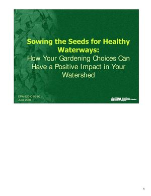 How Your Gardening Choices Can Have a Positive Impact in Your Watershed