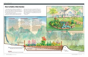 Outdoor America: How to Build a Rain Garden
