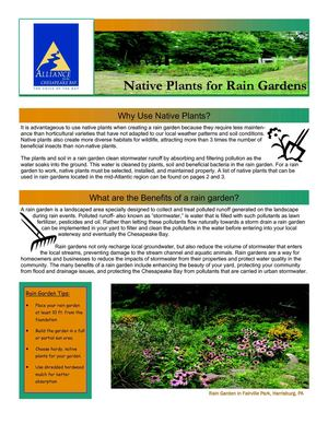 VA: Native Plants for Rain Gardens - Alliance for the Chesapeake Bay
