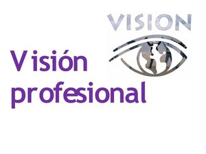 vision profesional