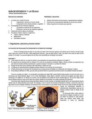 Calaméo - 1º - Guía de estudio Célula