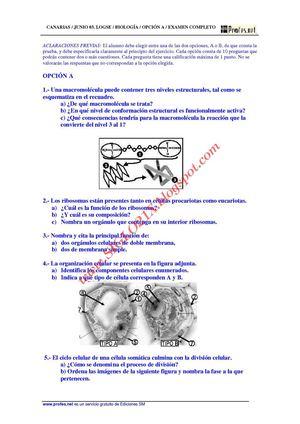 Calaméo - BIOLOGIA-SELECTIVIDAD-EXAMEN RESUELTO 3 CANARIAS-www ...