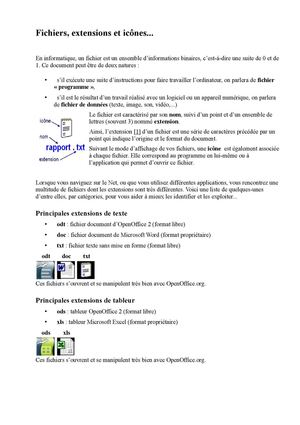format extension FICHIER RACCOURCI