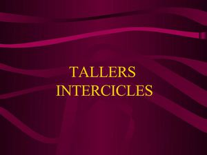 Tallers intercicles curs 2009-2010