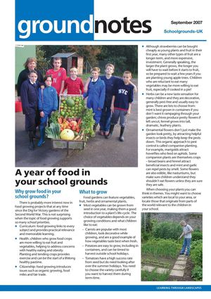 Why Grow Food in Your School Grounds: Outdoor Learning and Play