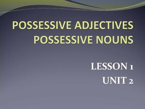 Possessives Adjectives and Nouns