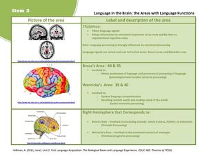 3 Language in the Brain