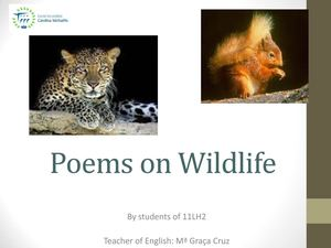 Poems on Wildlife - 11LH2