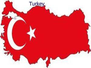 introduction of Turkey