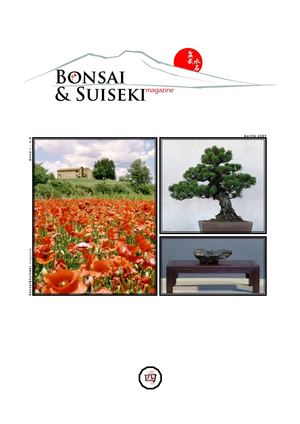 Bonsai suiseki magazine Nº4 Abril 2009